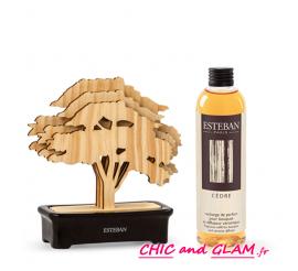 Coffret mon arbre a parfum  Esteban